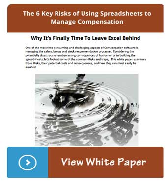 The 6 Key Risks of Using Excel for Compensation Management